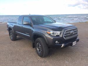2016 Toyota Tacoma TRD Off Road Pickup Truck - CLEAN CARPROOF
