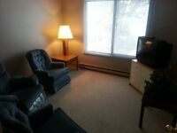 LOGAN LAKE, fully furnished, 2 bdrm now available $700
