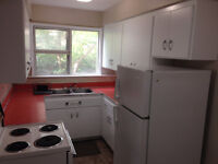 Live in the heart of Downtown! One bed apartment.  Heat included
