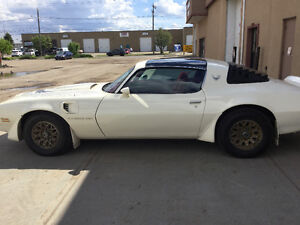 1980 Pontiac Firebird Turbo Trans Am