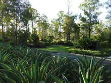 Lifestyle Property Bundaberg West Bundaberg City Preview