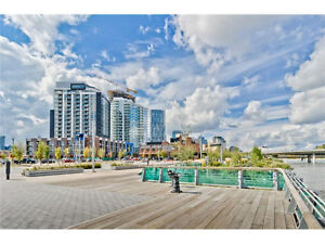 Brand New High Rise Bachelor Unit Of FIRST In Downtown
