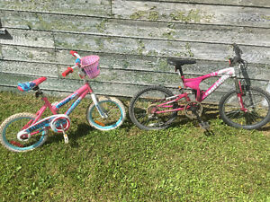 Pair of girls bikes