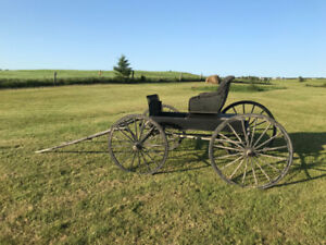 Antique Horse Buggy for Sale