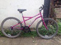 Apollo Incessant ladies mountain bike