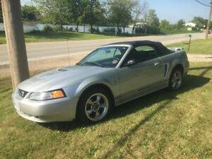 2001 Mustang Covertible
