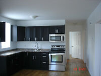 Newly Renovated 2  Bedroom in Cardinal
