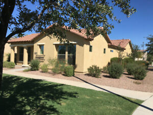 Vacation Rental Home in Gilbert AZ
