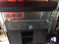 Juwel 250L Aquarium Fish Tank with Stand and Twin lights
