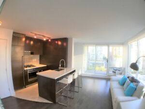$2900/month 2Bed 2Bath Downtown Condo Furnished