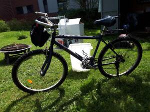 Minelli Road Bike 21 speed $300 obo