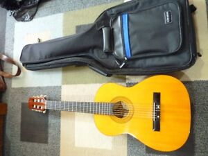 Tradition Acoustic Guitar