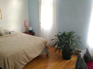 sous-location sublet 125/week 500/month