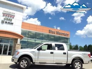 2014 Ford F-150 XLT  ACCIDENT FREE, 4WD, BLUETOOTH/SYNC