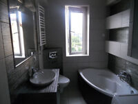 Painting, bathroom and kitchen fitting, tiling- work wanted