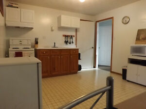 All inclusive spacious apartment Kitchener / Waterloo Kitchener Area image 6