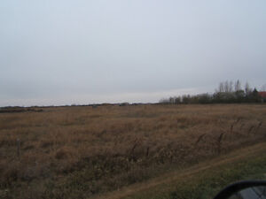 Need someone to cut our hay-St. Joseph's, SK