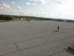Professional Flat & Sloped Roof Services