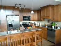 Beautiful furnished executive condo for one year rental