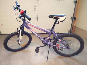 """SuperCycle 18"""" Bike for Boys or Girls"""