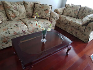 Brand new couches/living room set