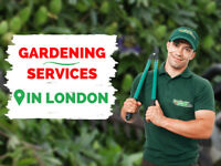 Garden Maintenance/Tree Surgery/Jet Wash Anywhere in London