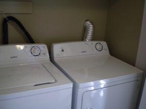 One Bedroom Basement Apt in Cowan Heights (Washer & Dryer inc) St. John's Newfoundland image 3