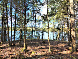 Waterfront Property 7.5ac and 450ft Shoreline