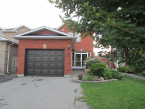 Bright, modern house for rent near Hwy. 401