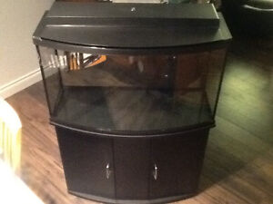 45 Gal Bow Fish Tank and Stand