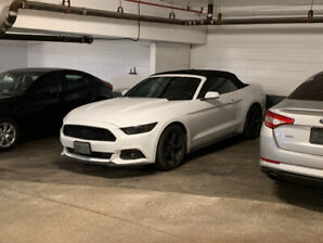 Mustang convertible v6 white! Really good price!! Low kms!