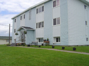 2 Bedroom Apartment - $800 with Heat, Lights, HW  ($675 unheated