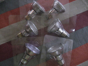 Halogen 50w bulbs