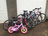 Bikes, 6 in total, need attention and well used. Could fix to sell on or keep