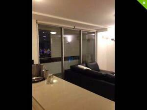 GUY/GIRL WANTED - CBD APARTMENT - GREAT VIEWS Pyrmont Inner Sydney Preview