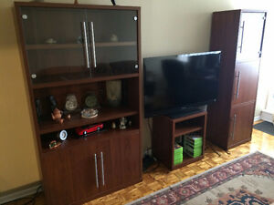 2 IKEA SHELF UNITS / CABINETS - Good Condition