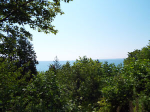 Waterview lot in Dyers Bay! - Presented By Ashley Barker