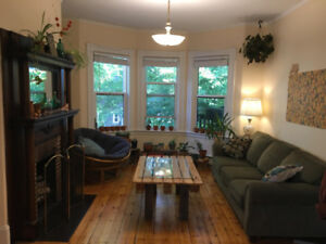 Bright Friendly Apartment, Room Available January 1st