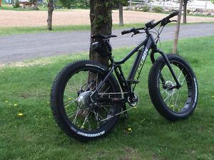 Fat bike Surface 604 Boar e350 à assistance électrique