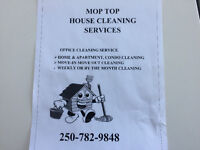 Will clean houses and apartments