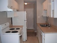 Large Newly Renovated 2-Bedroom Condo for Rent