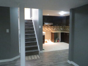 BASEMENT FINISHING  call 647-262-4855