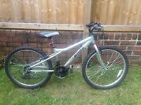 Dawes Childrens Mountain Bike