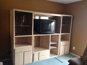 Entertainment Center with lots of storage & showcase lighting