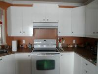armoires de cuisine melamine stratifié blanche
