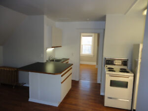 Oct.15 - 1 Bdrm Suite Character - Renovated - PETS