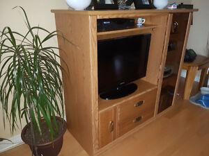 Tv entertainment unit Windsor Region Ontario image 2