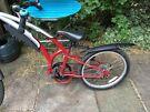 Trail Bike, 'tag along' bike
