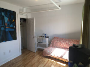 Large Bright Room for Rent on Gottingen!