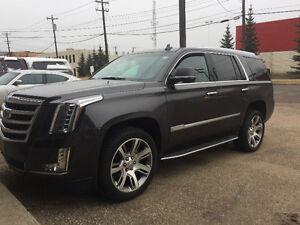 2015 Cadillac Escalade Premium LOADED LOW KM FINANCE AVAILABLE Edmonton Edmonton Area image 3